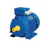 Асинхронный электродвигатель ELMO АИР100L6 2,2кВт 1000об.мин.