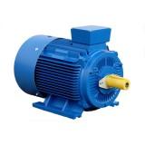 Асинхронный электродвигатель ELMO АИР100L2 5,5кВт 3000об.мин.