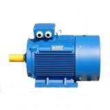 Асинхронный электродвигатель ELMO АИР100L8 1,5кВт 750об.мин.