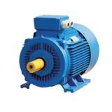 Асинхронный электродвигатель ELMO АИР100L4 4,0кВт 1500об.мин.